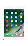 Details for Apple iPad mini 4 - 16GB